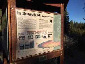 Eagle Lake Trout Sign
